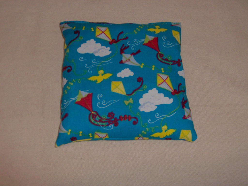 Coussin 20 x 20
